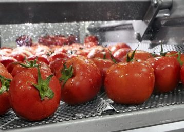 dioxido de cloro Procesado de frutas y verduras